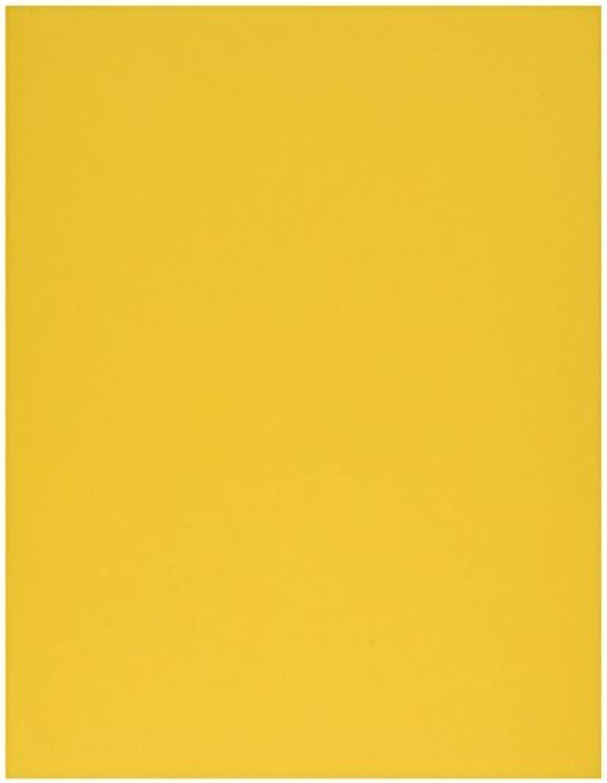 Bazzill Cardstock 8.5 X11 -Blau Calypso Grass Cloth 25 per pack by Notions - In Network B017RUXO5S   |  Neuer Markt