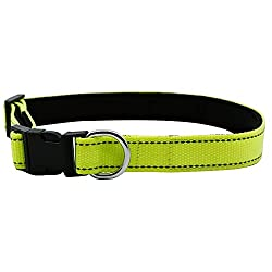 Dog collar online, dog collar amazon, dog collar price online, best dog collar, dog collar for puppy online