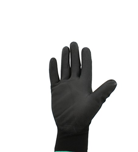 Global Glove PUG17 Polyurethane/Nylon Glove, Work, Medium, Black (Case of 144) by Global Glove Photo #2