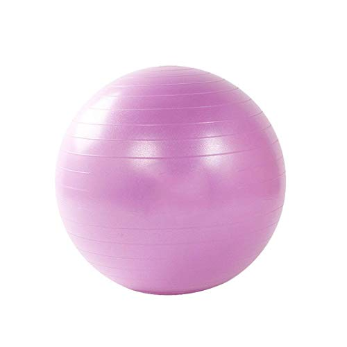 HWYDZ LInfinitely Exercise Ball Extra Dicke Balance- und Stabilitätskugel for Profis - mit Anti-Burst-Test - inklusive Handpumpe (Color : C, Size : 55mm)