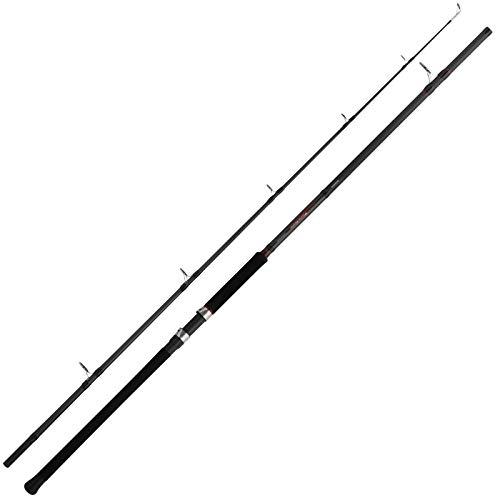 Canne per pesca al siluro