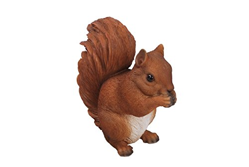 Vivid Arts Sitting Red Squirrel Resin Ornament