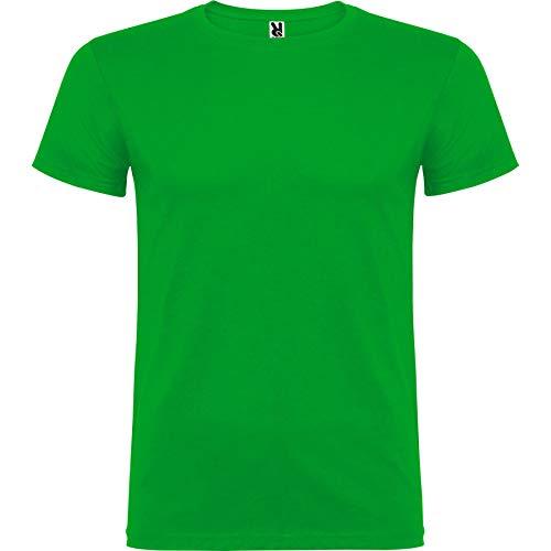 ROLY Camiseta Beagle 6554 Niño Verde Grass 83 11/12