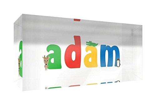 Little Helper Souvenir Décoratif en Acrylique Transparent Poli comme Diamant Style Illustratif Coloré avec le Nom de Jeune Garçon Adam 5 x 15 x 2 cm Petit