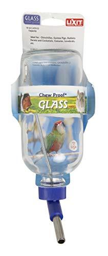 Lixit Botella de agua de vidrio, 16 onzas