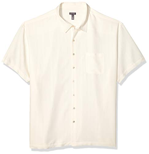 Van Heusen Men's Tall Air Short Sleeve Button Down Poly Rayon Stripe Shirt, Cream Egret, 2X-Large Big