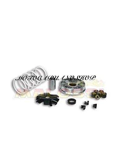 5111885 VARIATORE MULTIVAR MALOSSI 200 250 300 PIAGGIO BEVERLY VESPA GTS GT