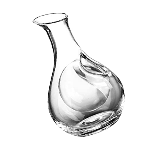 PRETYZOOM Accesorios de vino Regalos y Burbuja Blaster Set para Mujeres- Decantador de vino para el hogar de 385 ml Decantador de vidrio transparente dispensador de vino tinto