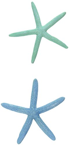 Finger Starfish   2 Painted Blue and Green Finger StarFish 2'-4'