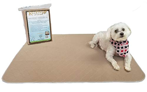 Kluein Pet Washable Pee Pads for Dogs, 2 Pack XL 34 x 36, Beige, Reusable Puppy Pads, Fast Absorbing Wee Mat; for Playpen, Housebreaking, Indoor Potty Training, Whelping, Incontinence, Travel