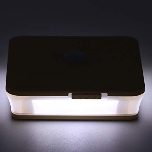 needlid Luz de Noche LED, lámpara de luz de Noche LED Duradera con Cable USB para pasillos para Dormitorio(Light Wood Grain, Pisa Leaning Tower Type)