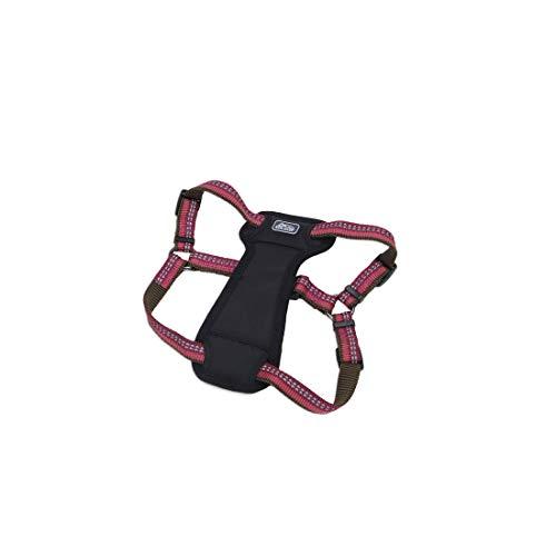 Coastal - K-9 Explorer - Reflective Adjustable Padded Dog Harness, Berry, 5/8' x 16'-24'