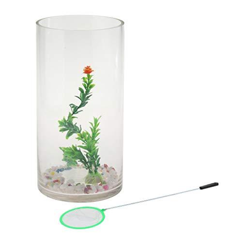 joyMerit Zylindrischer Glastank Kleines ökologisches System Aquarium - Typ 2