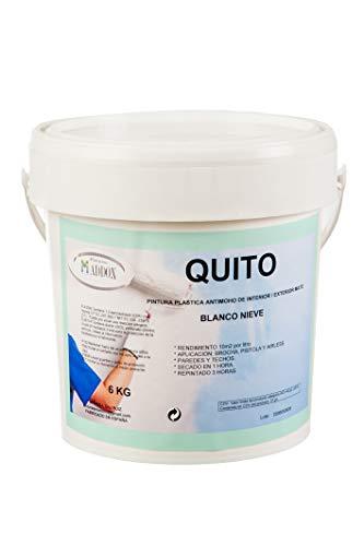 Pintura plástica mate antimoho,blanco nieve,para interior y exterior,paredes techos y fachadas,cubrición perfecta,antigoteo y lavable. 6 kg