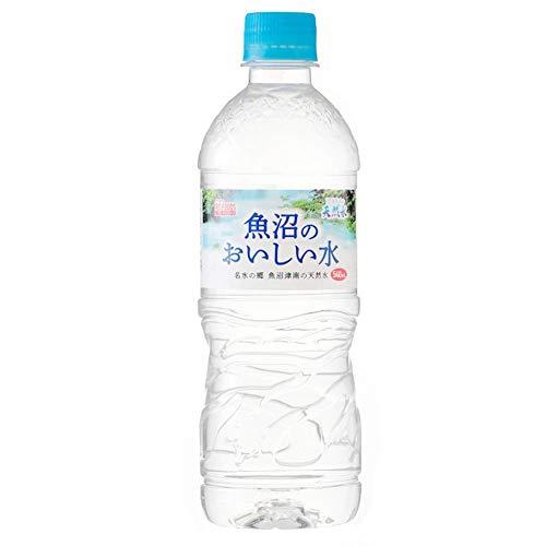 アイリスオーヤマ 魚沼産 おいしい水 飲料 540ml ×24本