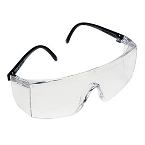 3M 1709INSafety Goggle (Pack of 2)