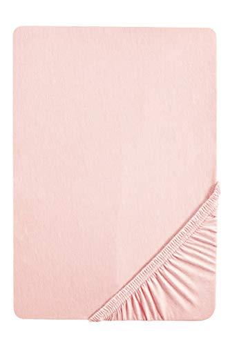 biberna 0077155 Jersey Spannbetttuch (Matratzenhöhe max. 22 cm) (Baumwolle) 90x190 cm -> 100x200 cm, rose