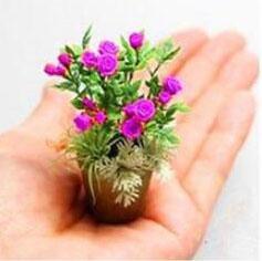 Nouveaux produits 100pcs 4 variétés de roses Mélange de graines rares Bonsai Mini arc-en-Graines de fleurs belle plante pour le bricolage jardin vert