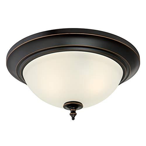 Westinghouse Lighting 63048