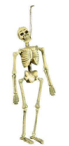 Squelette Articulé (40cm)