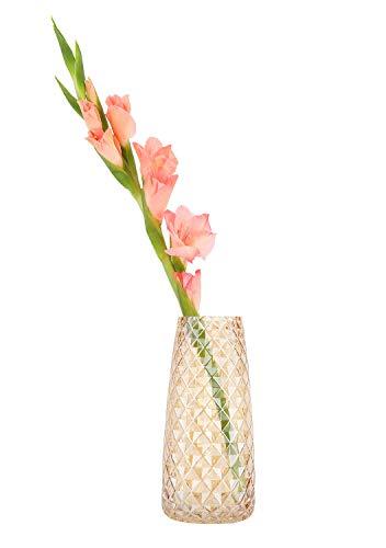 Luxspire Vasi in Vetro, Vaso per Fiori, Vaso Semitrasparente per Piante, Vasi da Fiori, Modello di Ananas, Stile di Ins, Vasi Cristallo, Decorazione per Casa Ufficio Matrimonio Festa - Ambra