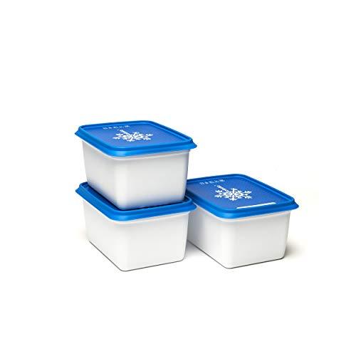 Amuse Gefrierdose, Kunststoff (PP), weiß/blau, 3 x 1000 ml