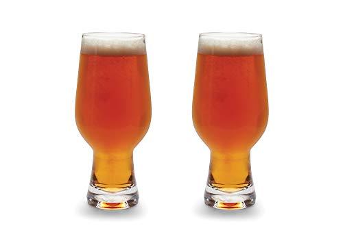 Aegir Tritan Unbreakable IPA Beer Glasses, Set of 2, 18-Ounces, Clear