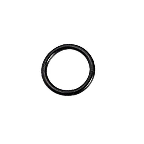 PinzhiEdelstahl Kleine Ohrstecker Nahtlose Nase Ring Hoop (schwarz, 10mm)