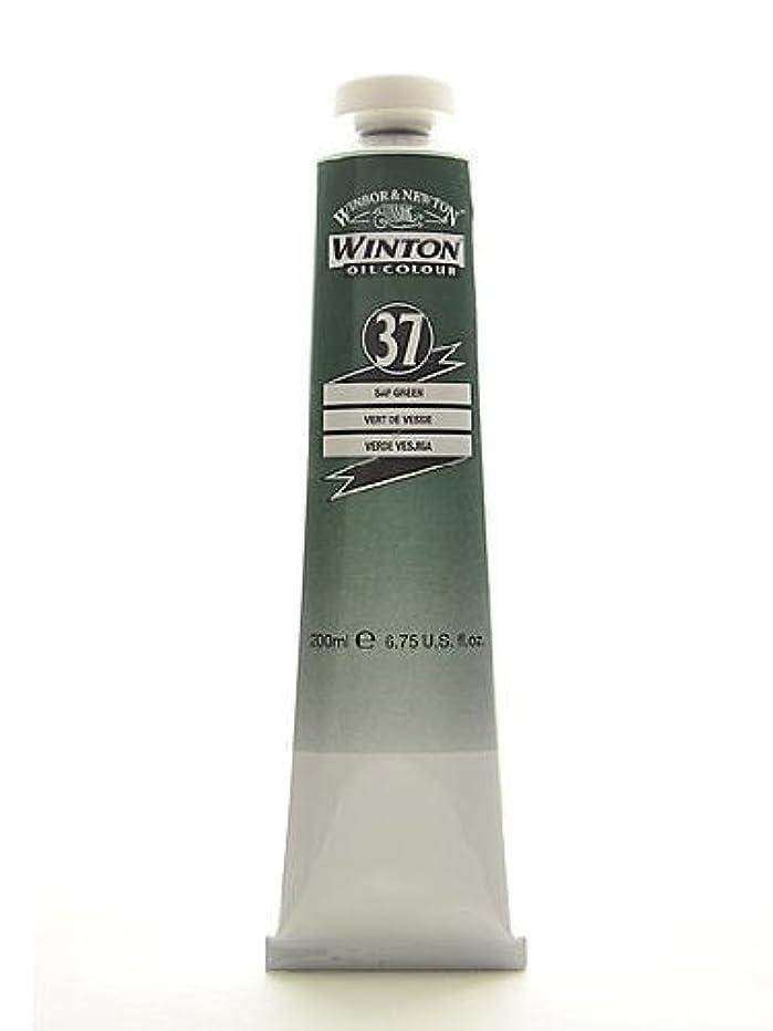 Winsor & Newton Winton Oil Colours 200 ml sap green 37
