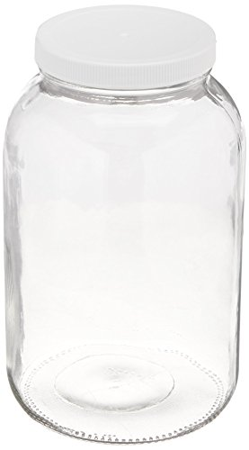 FastRack 1 Gallon Glass Widemouth Jar, Clear