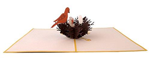 Lovepop Bird's Nest 3D Pop-Up Greeting Card