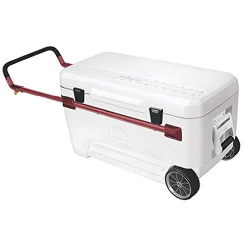Igloo Ultra 110 Kühlschrank