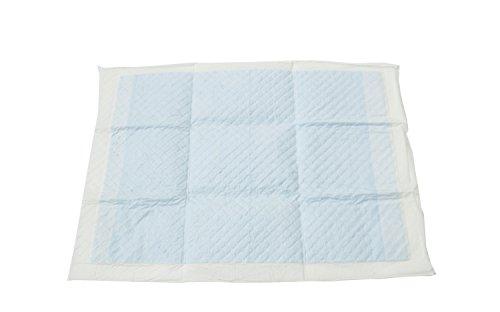 Iris Ohyama, Lot de 60 tapis éducateurs super absorbants jetables/Apprentissage de la propreté pour chiot - Pet Pad NS-60R - 45 x 33 cm