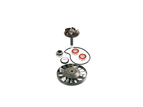 Wasserpumpen-Reparatursatz (Hersteller RMS in Erstausrüsterqualität) für Gilera Piaggio/Vespa