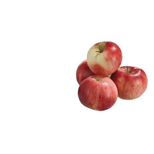 Obst & Gemüse Bio Apfel Braeburn (1 x 1000 gr)