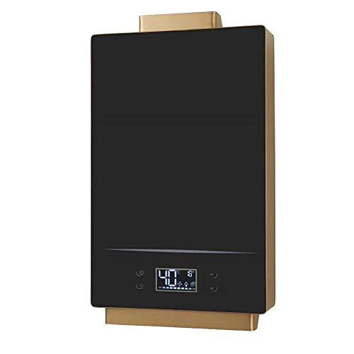 16L Erdgas-Flüssigpropan-Propan-Warmwasserbereiter 24 kW Sofortiger tankloser Wandkessel Energiesparender Wassertank (SCHWARZ) (Size : Natural Gas)
