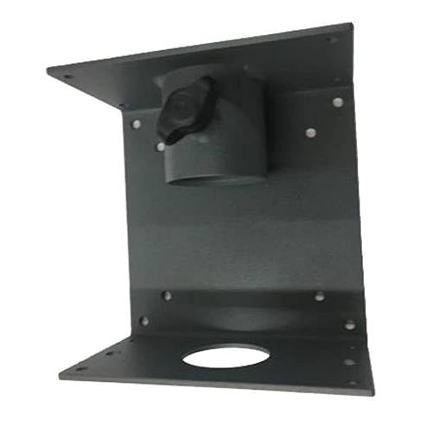 Delvcam Pole Mount for Flat Panel TVs & Monitors (Requires Speaker Stand Type Pole)