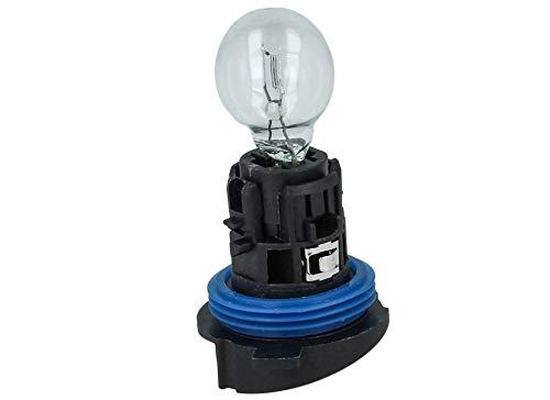 Carall - Bombilla halógena HP24W, 12 V, 24 W, transparente,