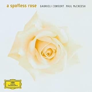 Spotless Rose