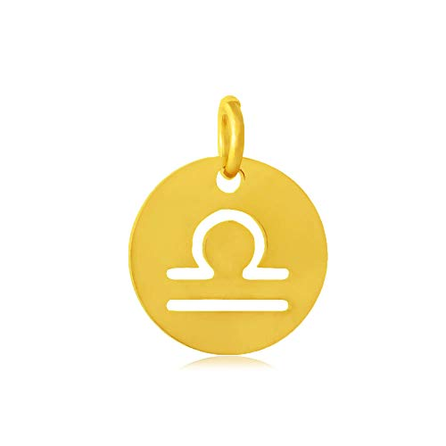 DanLingJewelry 10 stks 12 mm 304 RVS Platte Ronde Weegschaal Zodiakbord Bedels 12 Constellatie Hangers Kralen DIY voor Ketting Armband Sieraden Maken en Crafting Hole:3mm Gouden Kleur