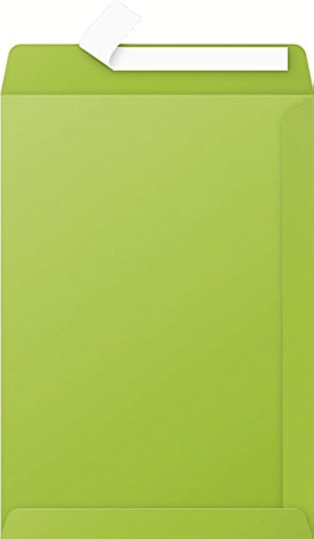 Clairefontaine 7055 C Karton mit 200 Hüllen Pollen 22,9 x 32,4 cm mintgrün B004HFZ43M  | Feine Verarbeitung