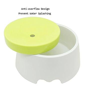 Chiens Gamelles et distributeurs Bouteille d'eau potable de chat d'animal de compagnie d'animal familier bols ne mouille pas la barbe pour empêcher la fontaine d'eau de débordement d'eau (blanc + vert