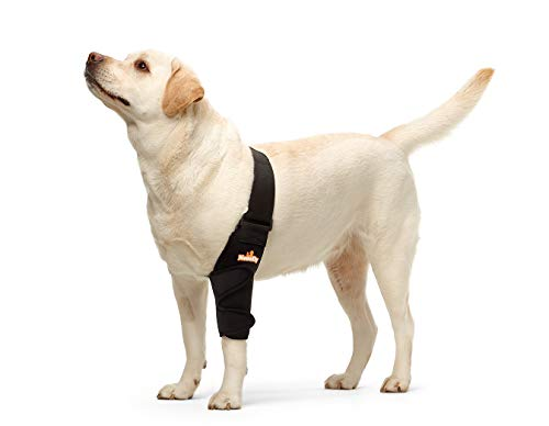 NeoAlly Dog Elbow Brace Protector Pads for Canine Elbow and Shoulder Support Elbow Hygroma, Dysplasia, Osteoarthritis, Elbow Calluses, Pressure Sores and Shoulder Dislocation (Right Large)