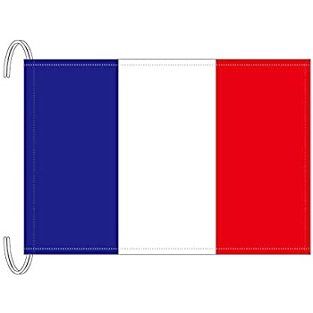 Amazon | テトロン製 フランス国旗(M判・34×50cm) | 地図・国旗 ...