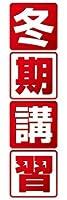 のぼり旗スタジオ のぼり旗 冬期講習001 大サイズ H2700mm×W900mm