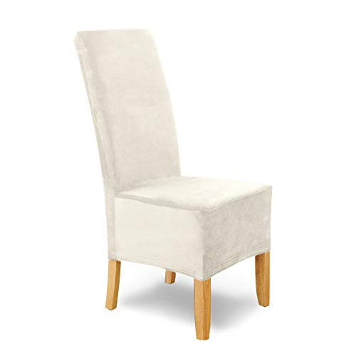 SCHEFFLER-Home Puma Velvet Fundas de sillas, Estirable Cubiertas, Terciopelo extraíble Funda con Banda elástica, Blanco-Crudo, Juego de 4