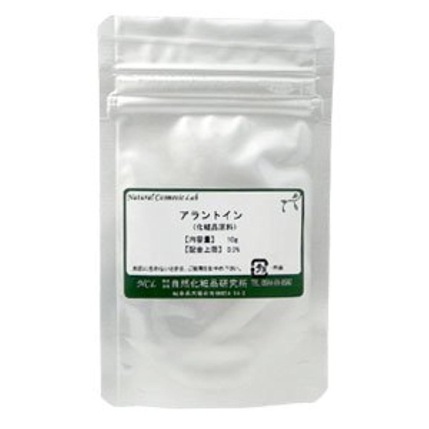 ショップピラミッド細部アラントイン 10g 【手作り化粧品原料】