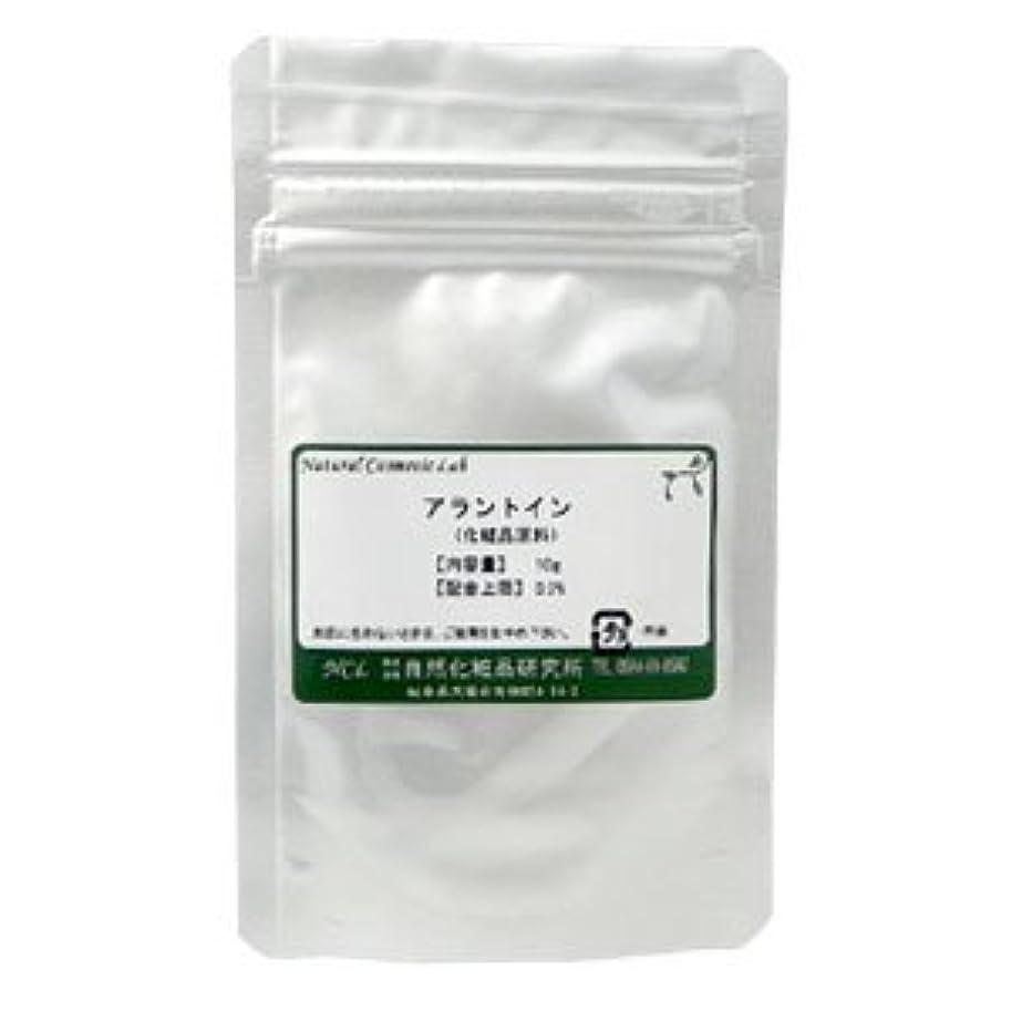 ネット最少空アラントイン 10g 【手作り化粧品原料】