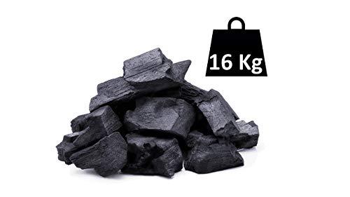 Horizón Forestal Carbón Vegetal de encina Natural 16kg Barbacoa