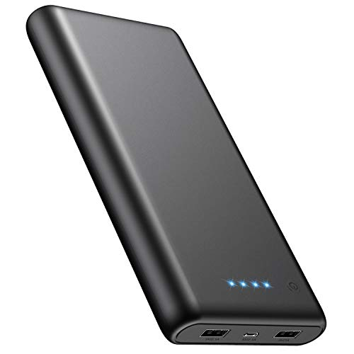 Portable Charger 24800mAh Power Bank with Smart LED Status, Dual USB Outputs, External Battery Pack Portable Phone Charger Compatible with iPhone, Samsung Galaxy, Tablet and More (Black)